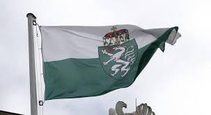 Flagge Steiermark