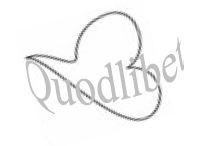 140717_quodlibet_logo