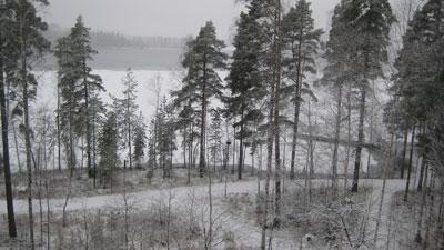 Vormittag in Finnland © Günter Brus